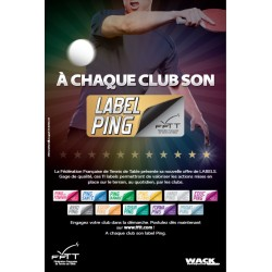 AFFICHE LABELS PING 2015