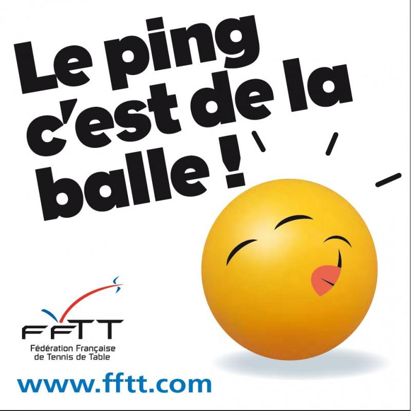 Fftt - Federation francaise de tennis de table classement ...